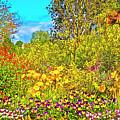 Spring Flowers by Edita De Lima