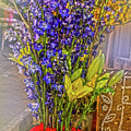 Spring Flowers For Sale by Sandy Moulder
