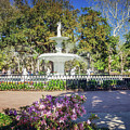 Spring Fountain by Joan McCool