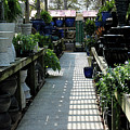 Spring Garden Center by Suzanne Gaff