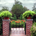 Spring Garden by Jessica Jenney
