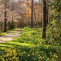 Spring Garden Path by Keith Smith