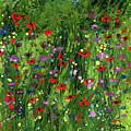 Spring Glory by Cindy Johnston