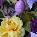 Spring Greetings by Living Color Photography Lorraine Lynch