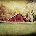 Spring In Nebraska by Julie Hamilton