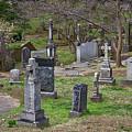 Spring In Oak Hill Cemetery #4 by Stuart Litoff