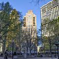 Spring In Philadelphia - Rittenhouse Square by Bill Cannon