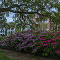 Spring In White Point Gardens by Dale Powell