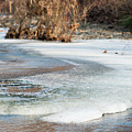 Spring Is Coming. The Ice Melts. by Nicola Simeoni