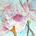 Spring by Jasna Dragun