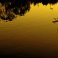 Spring Lake by Jeff DOttavio