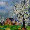 Spring Landscape by Pol Ledent
