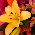 Spring Lily Bouquet by Amy Vangsgard