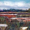 Spring Marsh by Carol Sprovtsoff