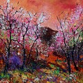 Spring Near My Home by Pol Ledent