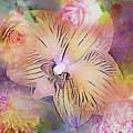 Spring Offerings by Linda Dunn