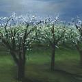 Spring Orchard by Sara Stevenson