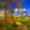 Spring Pathways by Tara Turner
