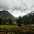 Spring Rain In The Wasatch by Mitch Johanson