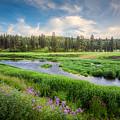 Spring River Valley by Rikk Flohr