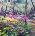 Spring by Sheila Holland