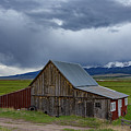 Spring Storm Looms Above The Wet Mountain Valley by Bridget Calip