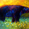 Spring Stroll - Black Bear by Marion Rose