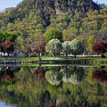 Spring Sugarloaf With Reflections Vertical by Kari Yearous