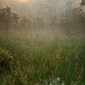 Spring Sunrise In The Valley by Dale Kincaid