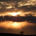 Spring Sunset  by Susan Baker