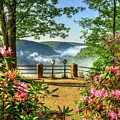Spring Time At Colton Point State Park by Bernadette Chiaramonte