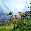 Spring Time Robins by John Junek