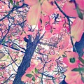 Spring Tree by Delila Wysong