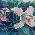Spring Vegitation by Julie Morrison