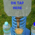 Spring Water On Tap Here by Fran West