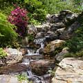 Spring Waterfall by Anne Cameron Cutri