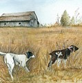 Springfield Bird Dogs by Robin Martin Parrish