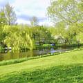 Springtime At Lazy Stream by Hans Erik Nielsen