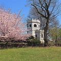 Springtime At The Botanical Garden by Nadia Asfar