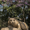 Springtime At The Lion Shrine by Rusty Glessner