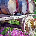 Springtime At V Sattui Winery St Helena California by Michelle Wiarda