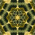 Springtime  Mandala by Sandra Gallegos