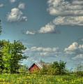 Springtime  by Pamela Baker