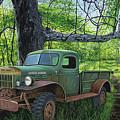 Springtime Power by Anthony J Padgett