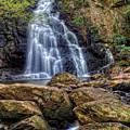 Spruce Flat Falls by Ron Plasencia