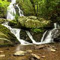 Spruce Flats Falls 2 B by John Brueske