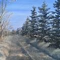 Spruce Trees Along A Snowy Road  by J O Huppler