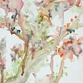 Sprung by Kaleidoscope Arts