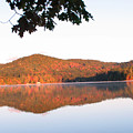 Squam Lake 2 by Michael Mooney