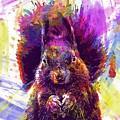 Squirrel Animals Possierlich Nager  by PixBreak Art